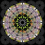 Eviscerated Mandala Number 2